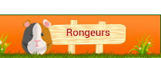 Rongeurs
